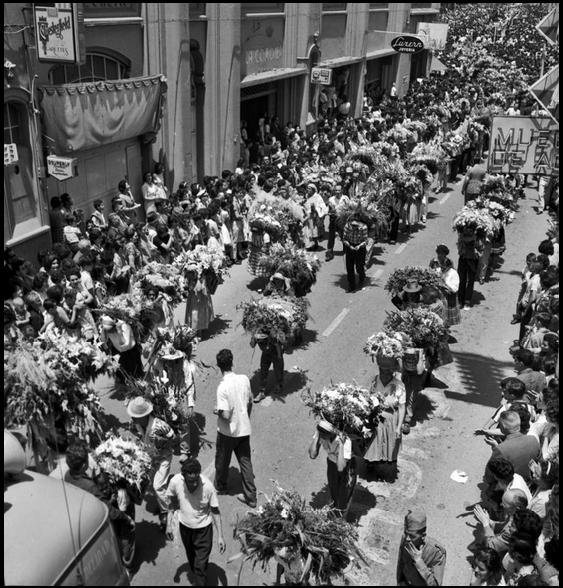 Desfile de silleteros feria de las flores 1967